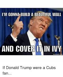 Chicago Cubs Memes - chicago cubs fans memes cubs best of the funny meme