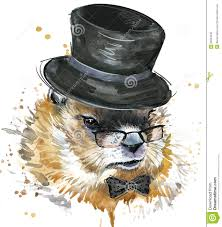 marmot watercolor groundhog day stock illustration image 66004048