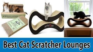 Cool Cat Scratchers Top 5 Best Cat Scratcher Lounges Review 2017 Youtube