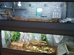 reptile l stand diy terrarium design awesome snake tank humidifier lucky reptile super
