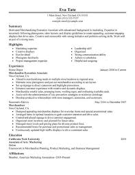 Best Product Manager Resumes by Amazing Marketing Summary For Resume Gallery Best Resume