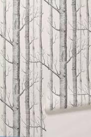 birch tree wallpaper gzsihai com