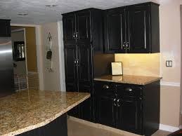 painting kitchen cabinets black yeo lab com