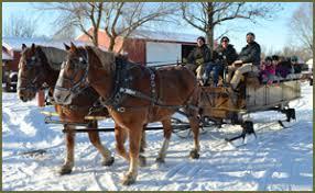 wny horsedrawn hay rides winter sleigh rides pony rides wny
