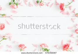 Flowers On - flower stock images royalty free images vectors