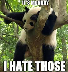 I Hate Mondays Meme - funny i hate mondays meme and lol