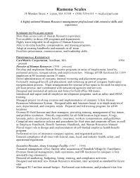 Executive Director Resume Template Cardiac Care Nurse Resume Popular Dissertation Chapter Writing