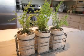 cass house making little plant pots