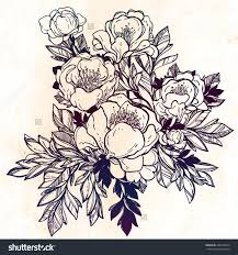 drawn rose bush vintage floral pencil and in color drawn rose