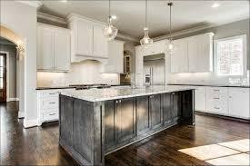2018 kitchen cabinet color trends stylish kitchen cabinet designs color trends opnodes