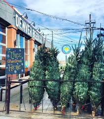 denver beer co u0027s christmas tree farm both taprooms tickets
