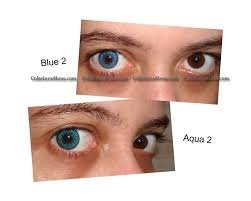 blue double colored contacts pair b2 22 99 colored