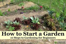 how to start a garden u2013 10 steps to gardening for beginners
