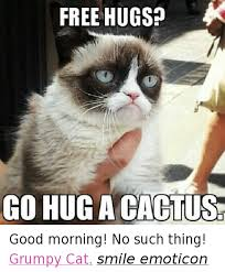 Grumpy Cat Meme No - free hugs co hug acactus good morning no such thing grumpy cat