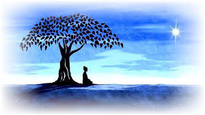 tree symbolism 101 yoga asana symbols for yoga teachers georgewatts org