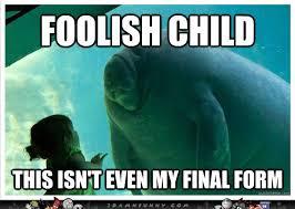 Manatee Meme - manatee memes google search sea people pinterest manatee