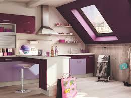 deco cuisine violet cuisine violet socooc pantone 2014 radiant orchid