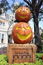 halloween decorations rentals scott dvcrental twitter