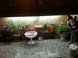 Kitchen Grow Lights 27 Best House Plants Images On Pinterest Vegetable Garden