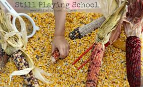 thanksgiving sensory bin indian corn sensory bin still playing