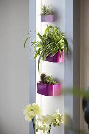 bilder mit rahmen kaufen magnettafel mit rahmen beleuchtet im greenbop online shop kaufen