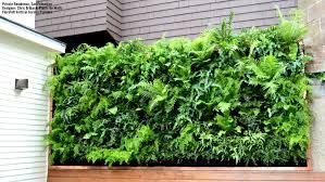 vertical gardens residential vertical gardens florafelt vertical garden systems
