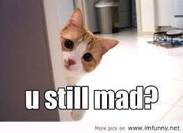 Baby You Still Mad Meme - you still mad
