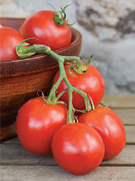 Types Of Patio Tomatoes The 10 Best Tomatoes For Containers Veggie Gardener