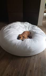 Where Can I Buy Bean Bag Chairs Man Makes His First Ever Bean Bag Chair So He Can Snuggle With His Dog