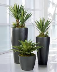 Plants For Desk Tara Dennis U0027 Ideas For The Outdoors Plants Gardens And Bathroom