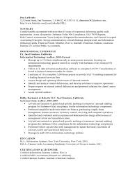 Senior It Auditor Resume Resume Samples Vault Com
