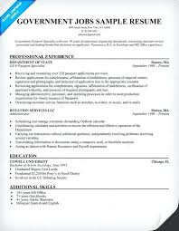 resume exles for government government resume templates sle government resume government