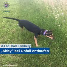 Polizei Bad Camberg Polizei Westhessen On Twitter