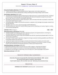 Sales Sample Resume by The Top 4 Executive Resume Examples Written By A Professional