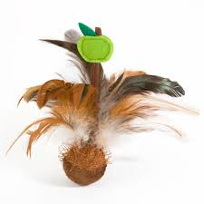 Cateracterum Palm by Buy Online Pet Cat Toys Cat Toy 2017 Shechosethecat