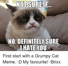 Grumpy Cat Meme No - 25 best memes about grumpy cat grumpy cat memes