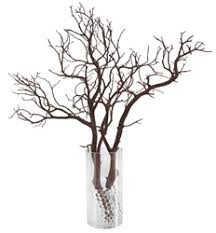 manzanita branches for sale manzanita branches at m a n z a n i a where to get manzanita