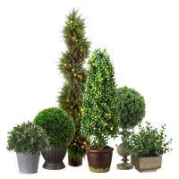 Outdoor Topiary Trees Wholesale - artificial topiary silk topiary plants silk plants direct