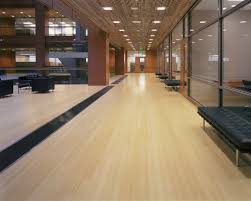 Bamboo Flooring Laminate Bamboo Flooring Appealing Laminated Mesmerizing Charming Vinyl