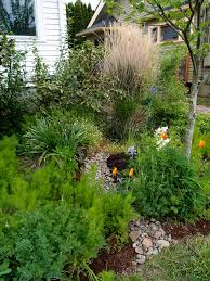 stormwater management backyard habitats