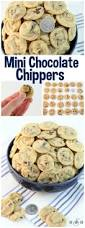 best 25 bite size appetizers ideas on pinterest appetizers for