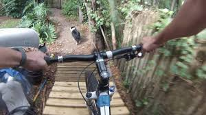 backyard pump track youtube