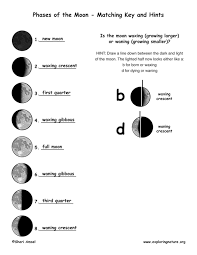 moon phases worksheet free worksheets library download and print