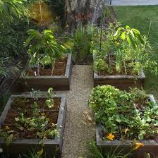 picturesque raised bed vegetable gardens is like home security