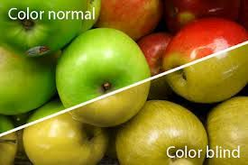 Is There A Cure To Color Blindness All You Need To Know About Color Blindness Md Health Com