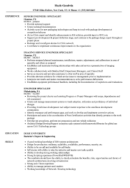 exle of a resume format engineer specialist resume sles velvet