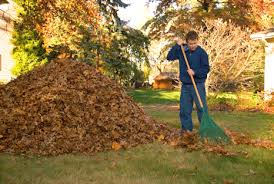 Fall Cleanup Landscaping by Spring Fall Clean Up Landscaping And Lawncare
