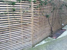 contemporary 6x6ft trellis fencing panels pressure treated timber