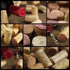 wine quiz u2013 wine wit and wisdom