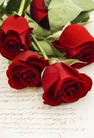 red roses on old love letter red roses any time pinterest